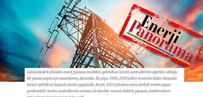 """""""About Electricity Capacity Market"""""""